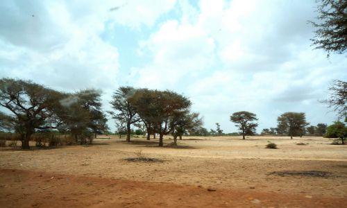 SUCO et Réseau Environnement créent un partenariat pour un projet de résilience climatique au Sénégal