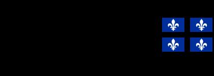 Logo_QuebecDrapeau_electronique